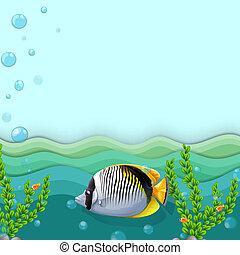 Un pez bajo el mar