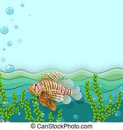 Un pez grande bajo el mar