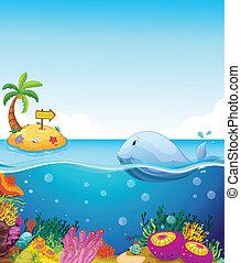 Un pez mirando la isla con una flecha