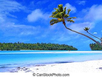 Un pie de isla