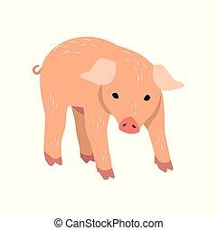 Un poco gracioso vector de dibujos animados de cerdo ilustrado en un fondo blanco