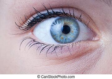 Un primer plano de un hermoso ojo azul femenino