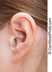 Un primer plano de un oído humano