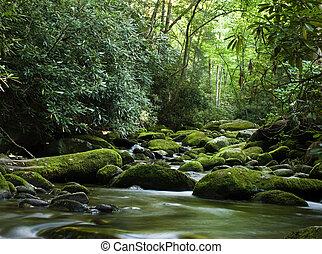 Un río pacífico que fluye sobre las rocas
