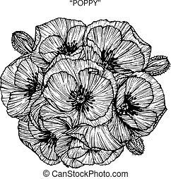 Un ramo de flores de amapola dibujando.
