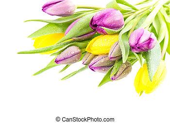 Un ramo de flores de tulipán con gotas de agua