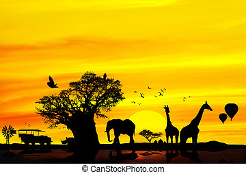 Un safari africano conceptivo.