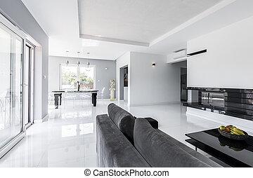 Un salón espacioso con sofá gris