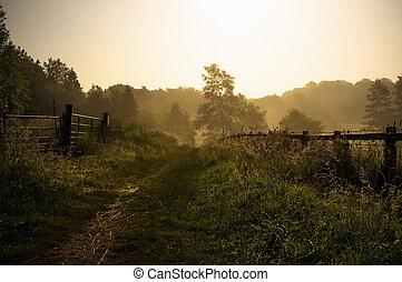 Un sendero tranquilo e inglés
