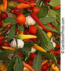 Un surtido de vegetales frescos