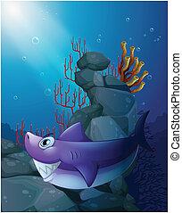 Un tiburón bajo el mar cerca de las rocas