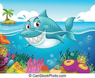 Un tiburón en el mar con corales