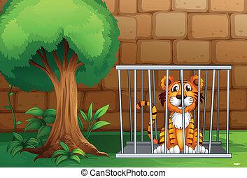 Un tigre dentro de la jaula de los animales