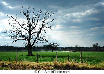 Un tractor en un campo con un árbol espeluznante y un cielo de mal humor