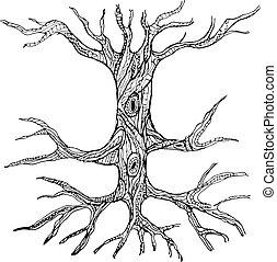 Un tronco de árbol desnudo con raíces