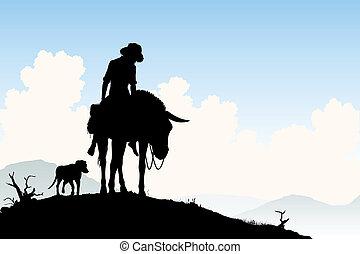 Un viajero burro
