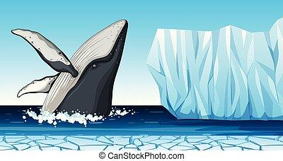 Una ballena en la Antártida