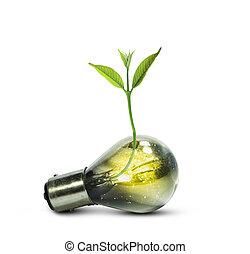Una bombilla con una pequeña planta creciendo dentro