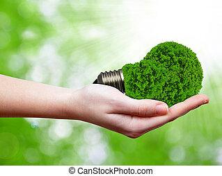 Una bombilla de energía ecológica