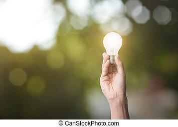 Una bombilla de mano. Concepto la energía verde.