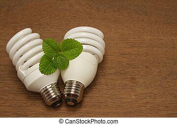 Una bombilla fluorescente compacto, un concepto verde de innovación que ahorra energía