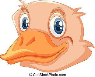 Una cara de avestruz