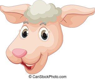 Una cara de oveja