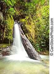 Una cascada en Ecuador
