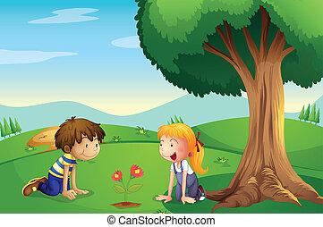 Una chica y un chico viendo crecer la planta
