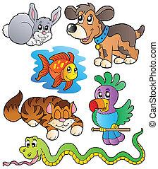 Una colección de mascotas felices