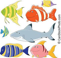 Una colección de peces