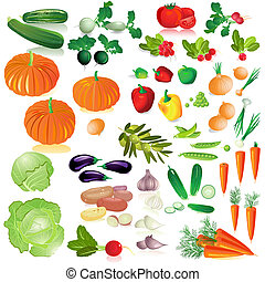 Una colección de vegetales