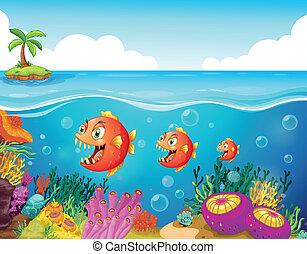 Una escuela de peces cerca de los arrecifes de coral