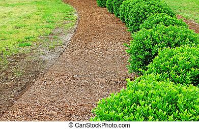 Una fila de arbustos bien conservados y manicurados en mulch marrón con espacio para su texto.