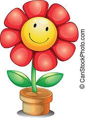 Una flor dentro de una olla
