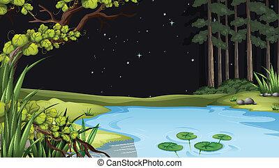 Una forma de agua en el bosque
