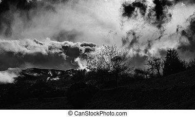Una foto de Winter BW de cielo dramático y nublado con árboles