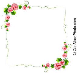 Una frontera con clavel de flores rosas