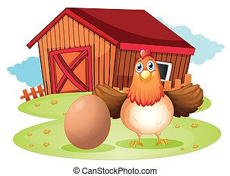 Una gallina y un huevo en el patio trasero