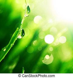 Una gota de agua brillante