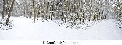 Una hermosa escena de nieve invernal con nieve virgen y un camino que se divide en dos direcciones