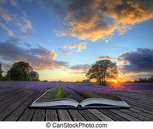 Una hermosa imagen de hermoso atardecer con nubes atmosféricas y cielo sobre campos de lavandas maduras y vibrantes en el paisaje rural inglés saliendo de páginas en un libro mágico, imagen creativa del concepto