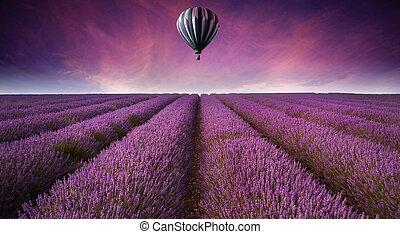 Una hermosa imagen del campo de lavanda, un paisaje de atardecer con globos de aire caliente