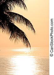 Una hermosa puesta de sol en la florida de la isla de Sanibel