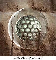 Una ilustración científica de micro células pintada en papel