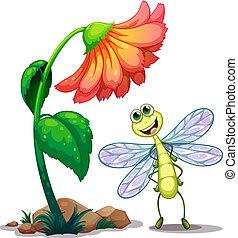Una libélula sonriente debajo de la flor gigante