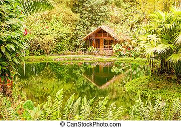 Una lujosa cabaña exótica en el Amazonas Basin Ecuador