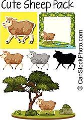 Una manada de ovejas bonitas