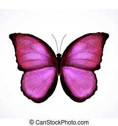 Una mariposa rosa brillante aislada. Vector