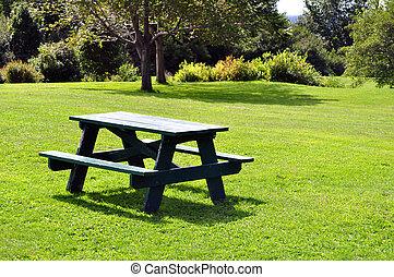 Una mesa de picnic